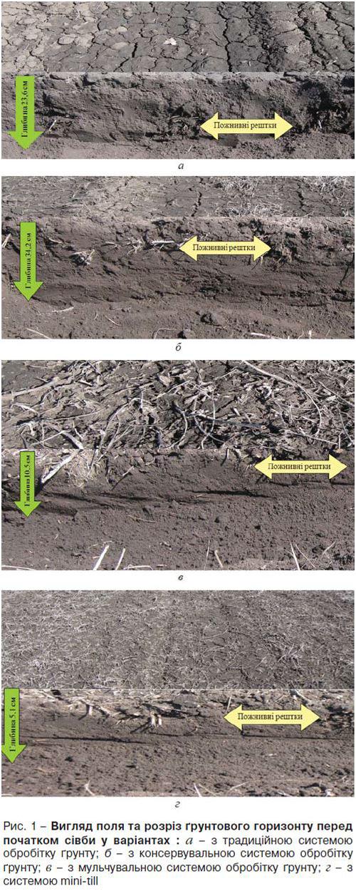 Варианты обработки почвы с применением разных технологий